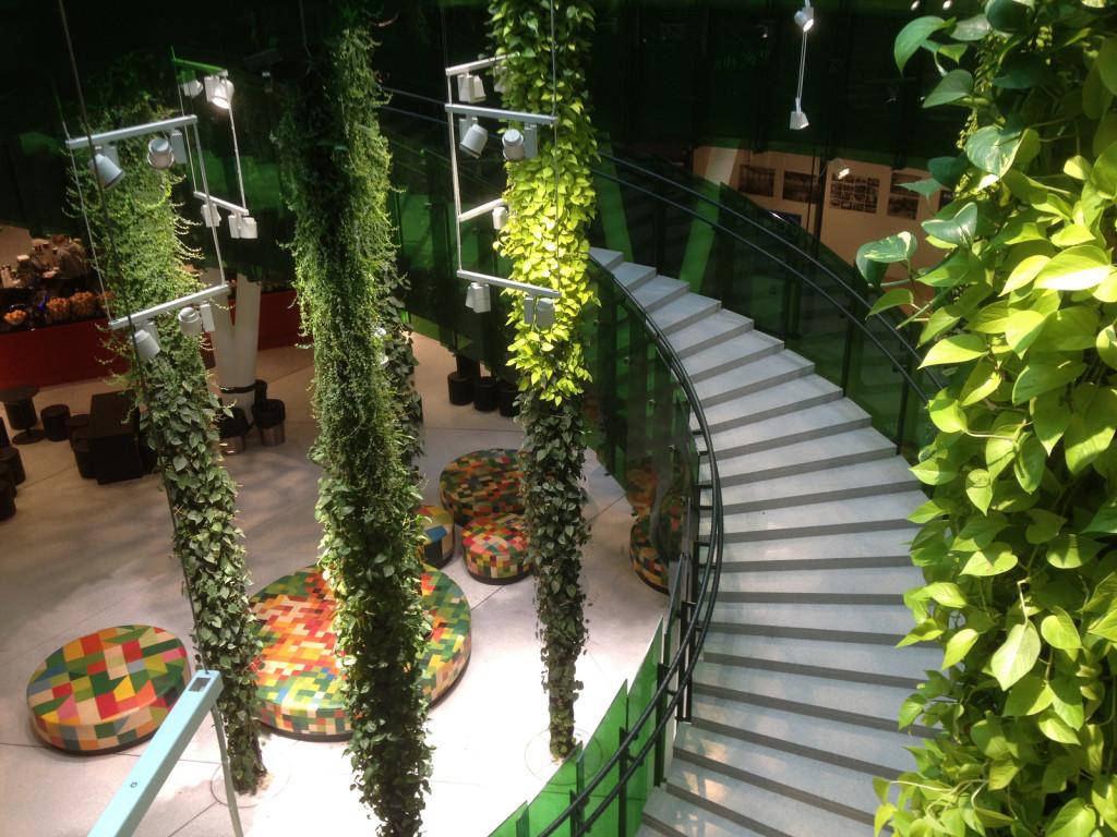 Trappor i grönt